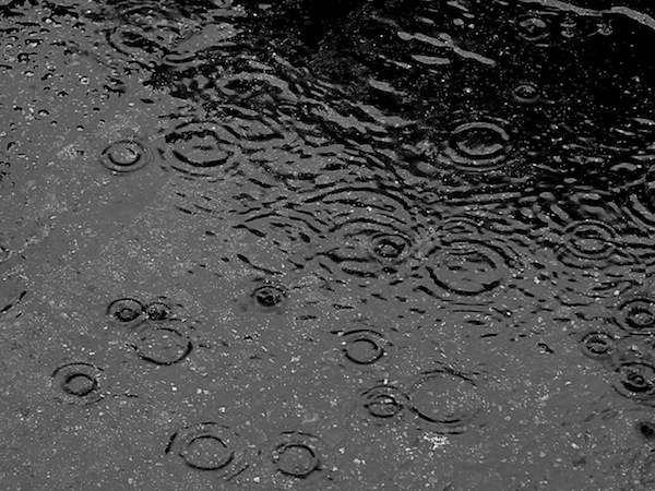 sumber gambar: https://www.smithsonianmag.com/science-nature/what-makes-rain-smell-so-good-13806085/